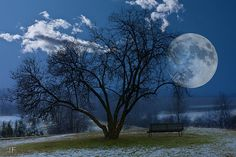 blue man, park moon, celesti night, beauti, full moon