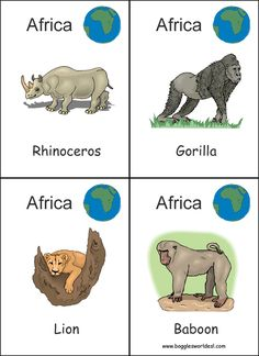 Flashcards animals of the world, continents