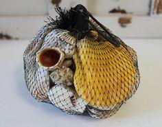 Stocking Stuffer Idea - Small net bag with a great assortment of small seashells, perfect and affordable! #californiaseashellcompany #caseashells #stockingstuffer