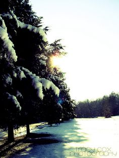 Our Snow In Kentucky!