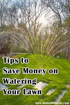 Tips on How to Save Money Watering Your Lawn http://madamedeals.com/?p=492602 #inspireothers #tips