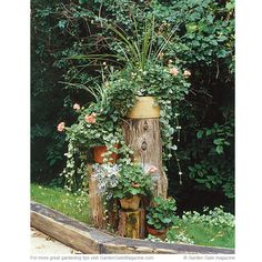 DIY pedestal  Try this interesting way to make containers even more eye-catching.