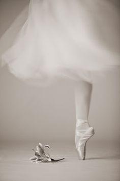 ♫♪ Dance ♪♫ Ballet