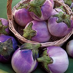 Eggplant, Round Mauve   Seed Savers Exchange