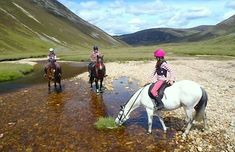 best vacation spot for horse lovers