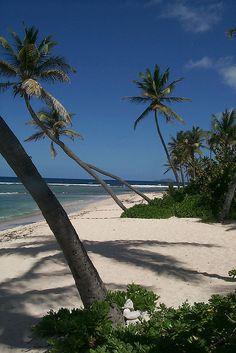 St Croix US Virgin Island