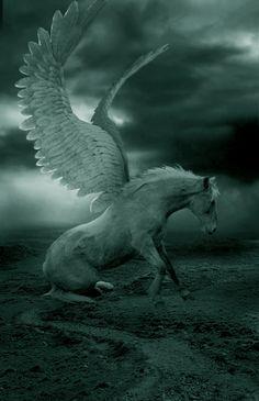 hors, pegasus, fantasi, dream, digital art, greek gods, unicorn, artist, greek mythology