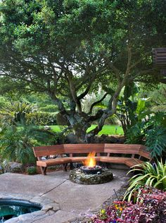 Great Firepit and outdoor space