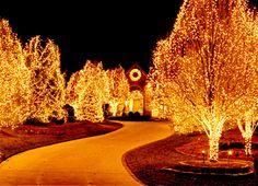 Christmas in Omaha