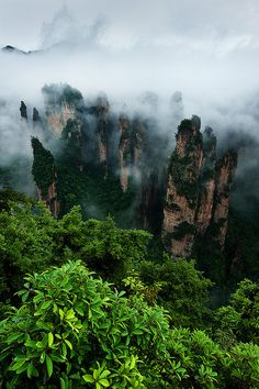 Zhangjiajie National Park, China
