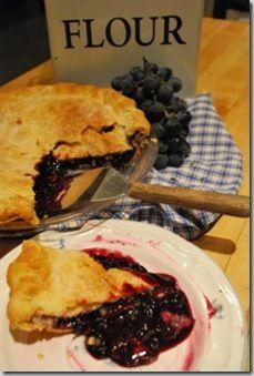 Concord Grape Granita Recipes — Dishmaps