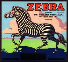 East Highlands San Bernardino County Zebra Orange Citrus Fruit Crate Box Label Art Print. $9.99, via Etsy.