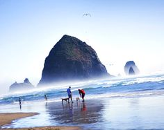 Haystack Rock, Oregon Coast i want to go back best day of my trip!