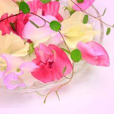 Sweet Pea Fragrance Oil  #fragrance #fragranceoil #fragranceoils #wholesale #naturesgarden
