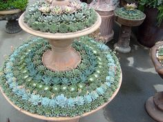 Biedermeier succulent garden design, Del Mar Fair Garden Exhibit