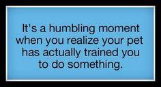 Humbling Moment