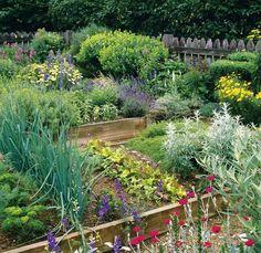 Edible Landscaping:
