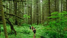 What to pack for a hike: 10 essential items | MNN - Mother Nature Network