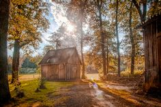 Wooden house in forest with sun setting through the trees, HDR image