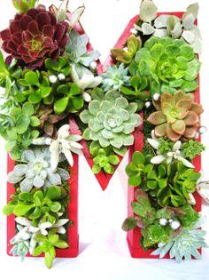 Small Succulent Monogrammed Planter Planter