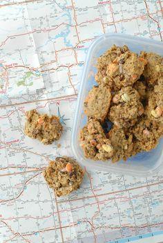 the Best Road Trip Breakfast Cookies  - BoulderLocavore.com #glutenfree
