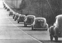 VW beetle split window