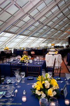 navy table cloths