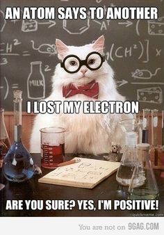 Chemistry cat joke, not everyone will get this