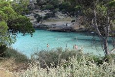 Playa El Mago, Majorca Playa El Mago, close to Magaluf, is Majorca's first official nude beach. Surrounded by shady pines, its golden sand is punctuated by rocky outcrops and the small bay is lapped by crystal-clear waters. There is an open air bar here too. Playa El Mago is close to Portals Vells, a small village that's popular with families.
