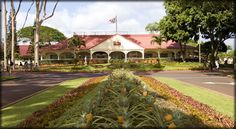 The Dole Pineapple Plantation is a fun place. Quite the tourist event but still fun. When you Hawaii, make sure you visit! www.MyDSWA.org