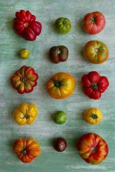 Heirloom tomatoes #coloreveryday