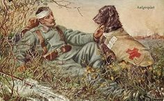 Red Cross dog / WWI
