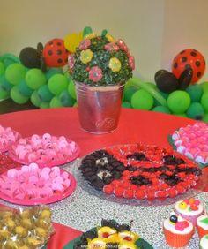 Festa Infantil - Joaninhas no Jardim, flores de jujuba e joaninha modelada com docinhos. http://www.suelicoelho.com.br/2012/03/festa-infantil-joaninhas-no-jardim-da.html