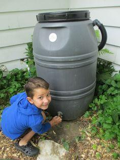 """Holding Onto the Garden - Environmental Sustainability.""  - National Gardening Association article on school gardens"