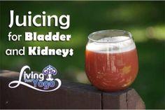 Juicing for Bladder and Kidneys