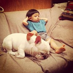 Sweet Friendship Between a Boy and His French Bulldog -