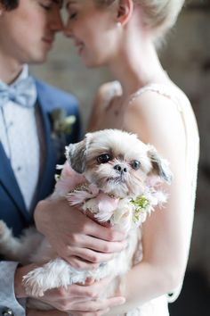 Puppy with flower garland for wedding | Melissa Kruse Photography and Diana Tsao Events | see more on: http://burnettsboards.com/2014/08/bubble-wedding/