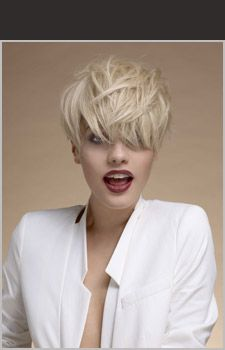 Collection vog for Vog hair salon