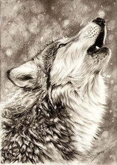 Georgeous and amazing drawing technique!!    Found here : http://ambr0.deviantart.com/art/Howling-Wolf-256232534