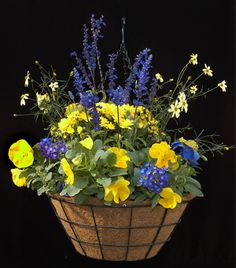 Taking this pix to bergeson nursery to make up my perfect front porch hanging basket! Can't wait!