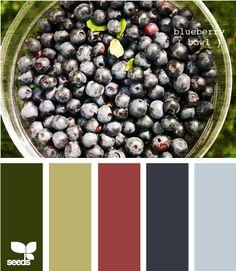Blueberry Bowl palette