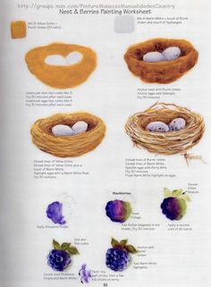 How to paint a birds nest and also berries by Priscilla Hauser.