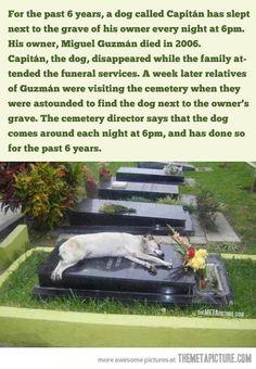 Wow. Way to make me cry.