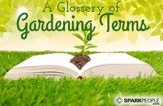 Glossary of Gardening Terms via @SparkPeople