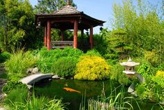 Asian Koi Pond and gazebo. Landscaping Network Calimesa, CA