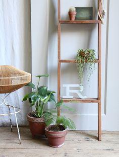 Plant Ladder Display ~  Vintage Wooden Ship's Bunk Ladder            - Plant Life!