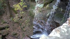 Waterfall in the Wil