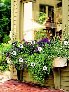 Easy Beautiful Window Boxes for Sun
