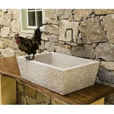 forests, idea, outdoor sink, outdoor kitchens, stone forest, kitchen sinks, wood countertops, stones, garden