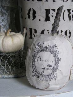 holiday, pumpkins, halloweeni